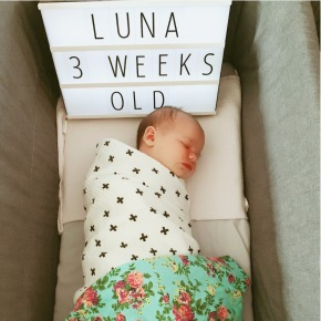 Luna – three weeks old