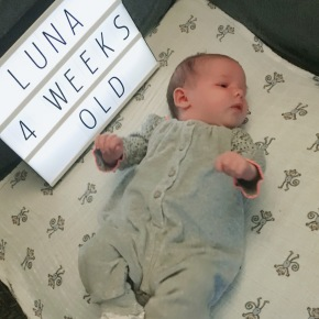 Luna – four weeks old